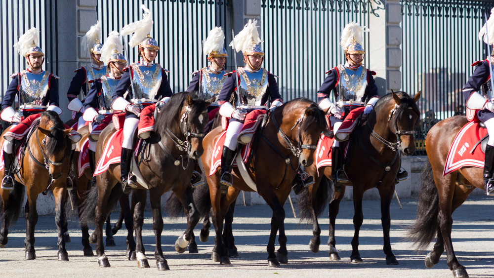 Horses and soldiers during the Change of the Guard at the Royal Palace
